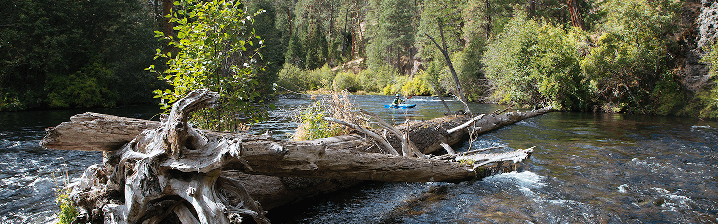 Kayaking on Oregon's Wild and Scenic Metolius River