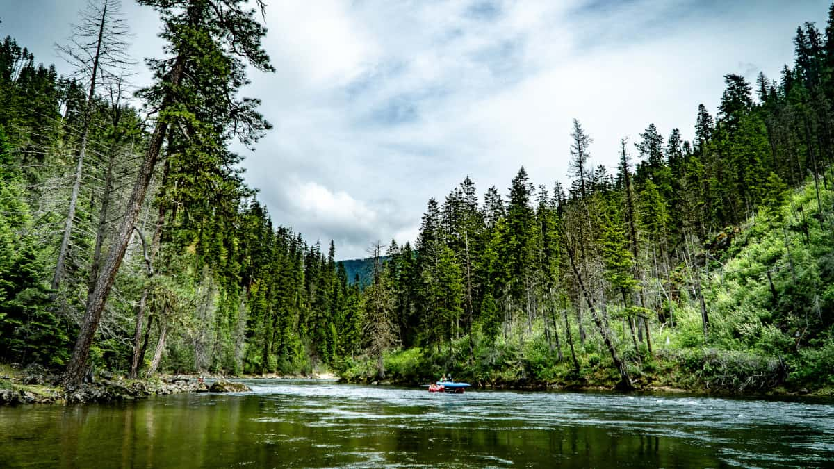 Floating through the heart of the Selway-Bitterroot Wilderness makes for spectacular scenery.